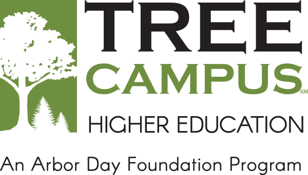 Tree campus logo