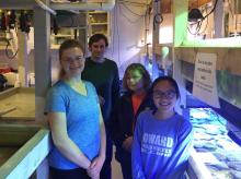 Students maintain the Maryland Marine Microcosm Lab